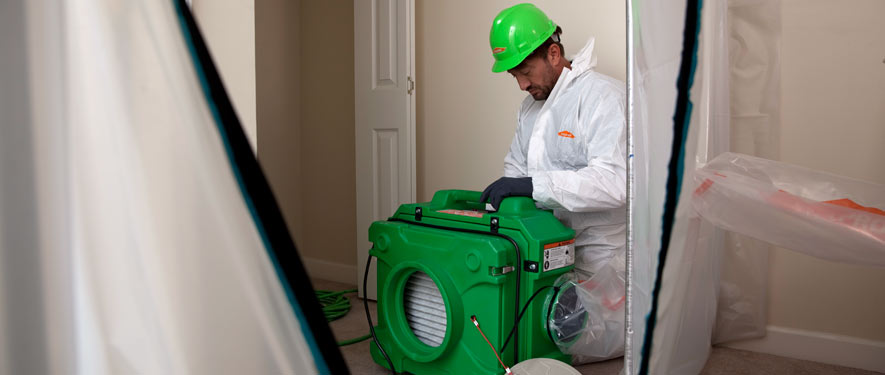 San Diego, CA mold cleanup