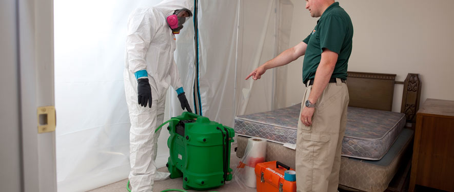San Diego, CA mold removal process